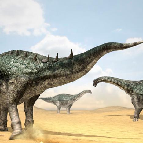 ¡Bulbasaurus, te elijo a ti!